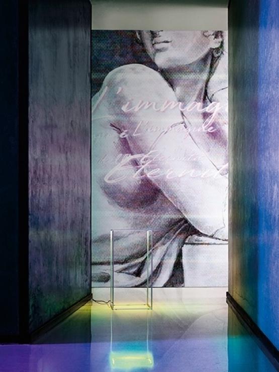 Wall & Deco Faenna